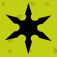 Ninja Star Game