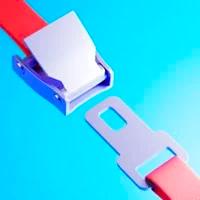 Belt Secure Online Juego