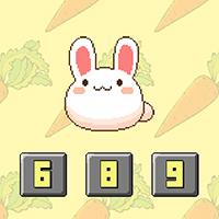 Bunny Math Game