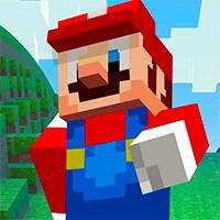 Super Mario MineCraft 3D Game
